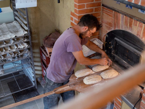 Paysan Boulanger, GAEC Pietometi